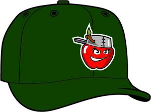 Fort Wayne Tin Caps  -  New Era 5950 Performance Fabric Ftd. Minor League Low Crown Baseball Cap  Home