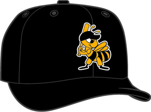 Salt Lake City Bees  -  New Era 5950 Performance Fabric Ftd. Minor League Low Crown Baseball Cap  Home