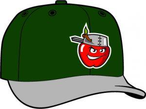 Fort Wayne Tin Caps  -  New Era 5950 Performance Fabric Ftd. Minor League Low Crown Baseball Cap  Road