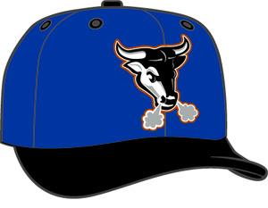 Durham Bulls  -  New Era 5950 Performance Fabric Ftd. Minor League Low Crown Baseball Cap  Alt.