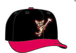 El Paso Chihuahuas  -  New Era 5950 Performance Fabric Ftd. Minor League Low Crown Baseball Cap  Alt.